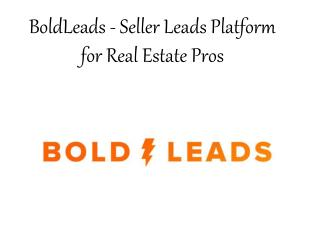 Real BoldLeads Reviews - Bold Leads Success Stories