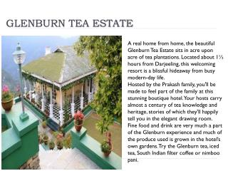 Glenburn tea estate