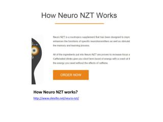 How Neuro NZT works?