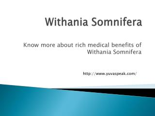 Withania Somnifera Medical Benefits of Withania Somnifera