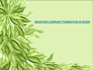 Find Ultimate Support for Company Formation in Spain