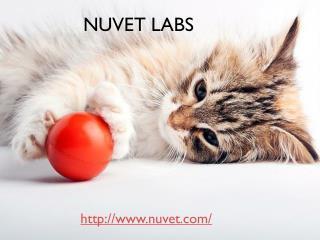 Nuvet Labs - Nuvet Plus Reviews - Nuvet