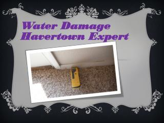 Water Damage Havertown Expert