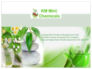 Menthol Crystal Manufacturers