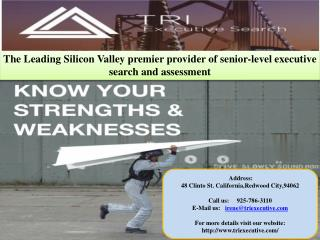 The Leading Silicon Valley premier provider of senior-level executive search and assessment