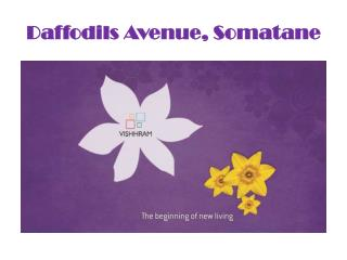1,2,3 BHK Luxurious Apartment in Somatane -Daffodils Avenue