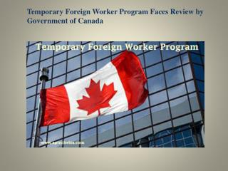 Temporary Foreign Worker Program Faces Review by Government of Canada