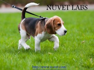 Nuvet Labs - Nvuet Reviews - Nuvet Labs Reviews