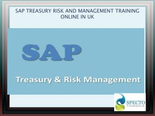 SAP TREASURY RISK AND MANAGEMENT TRAINING ONLINE IN Japan
