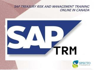 SAP TREASURY RISK AND MANAGEMENT TRAINING ONLINE IN CANADA
