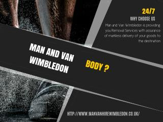 Man and Van Wimbledon