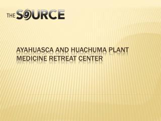 medicinal plants of peru
