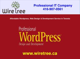 Affordable Wordpress, Web Design and Development Service in Toronto | WireTree