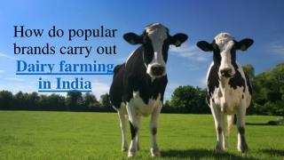 Find everything about dairy farming in india