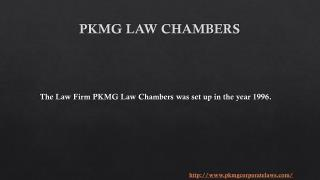 What is Civil Litigation I PKMG