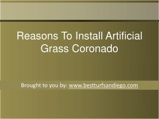Reasons To Install Artificial Grass Coronado