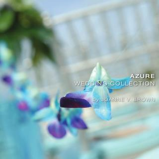 Cayman Weddings Planner Company Celebrations LTD Proudly Introduces the New Azure Wedding Collection