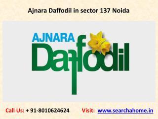 Ajnara Daffodil in sector 137 Noida