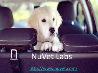 NuVet Labs Reviews - NuVet Plus Reviews