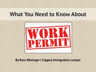 What You Need to Know About Work Permit
