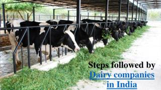 Dairy companies in india