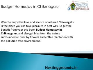 Budget Homestay In Chikmagalur