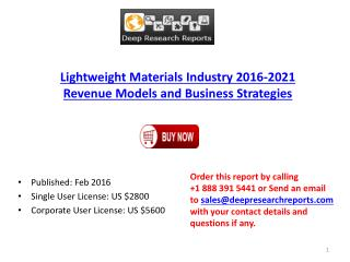 Lightweight Materials Industry 2016-2021 Revenue Models and Business Strategies