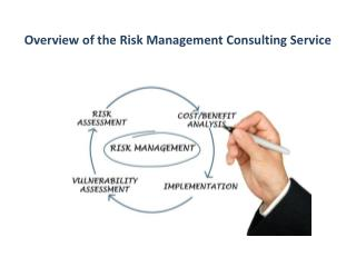 Overview of the Risk Management Consulting Service