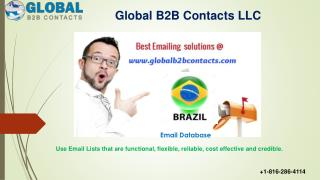 Brazil Business Email Database