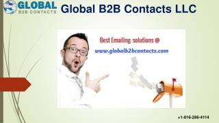 CEO BUSINESS EMAIL DATABASE