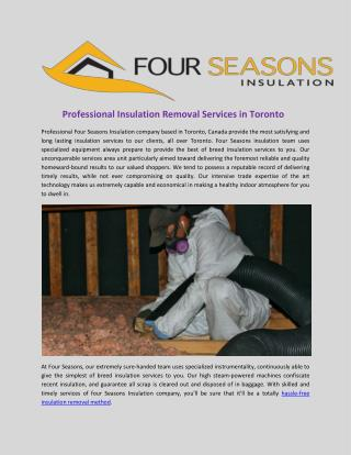 Professional insulation removal services in toronto