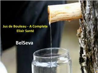 Jus de Bouleau - A Complete Elixir Santé