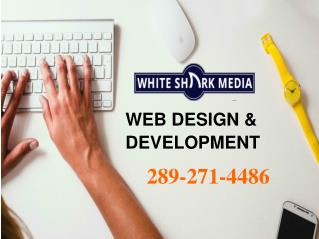 Web Design & Development St. Catharines – White Shark Media | 289-271-4486