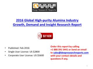High-purity Alumina Market 2016 Key Manufacturers Analysis and Global Industry Forecasts