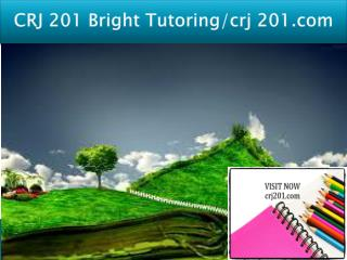 CRJ 201 Bright Tutoring/crj 201.com