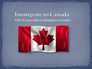 Wish To Learn How to Immigrate to Canada?