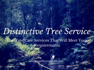 Distinctive Tree Service