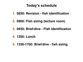 Today s schedule