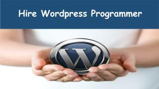 Hire Wordpress Programmer