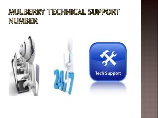 Mulberry email technical support number
