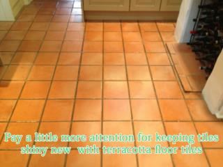 Buy terracotta floor tiles devon-  uk