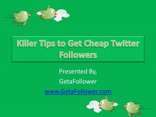 Killer Tips to Get Cheap Twitter Followers