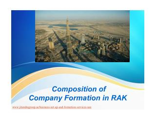 Composition of Company Formation in RAK