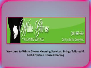 Exclusive House Cleaning Services under Professional Maids