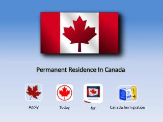 Canada Permanent Residence Options At A Glance