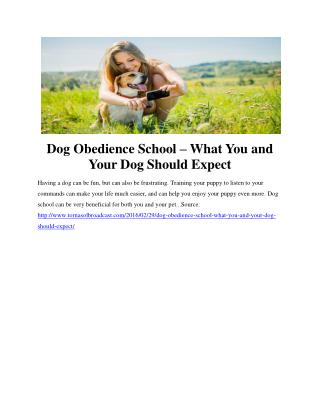Dog Obedience School – What You and Your Dog Should Expect