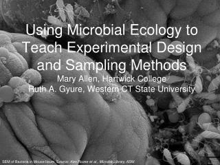Using Microbial Ecology to Teach Experimental Design and Sampling Methods Mary Allen, Hartwick College Ruth A. Gyure, We