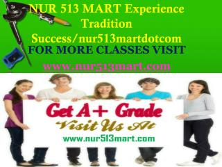 NUR 513 MART Experience Tradition Success/nur513martdotcom