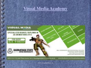 Animation institute in Chandigarh