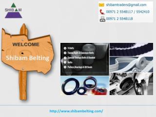 Shibam provides Gates Polyflex Belts in UAE